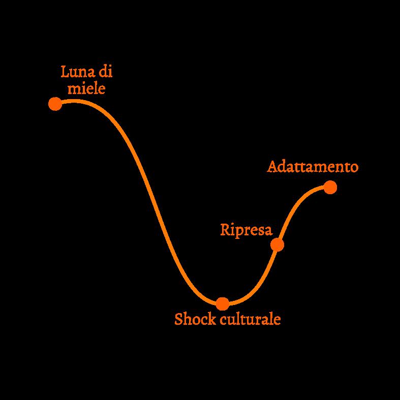 grafico adattamento